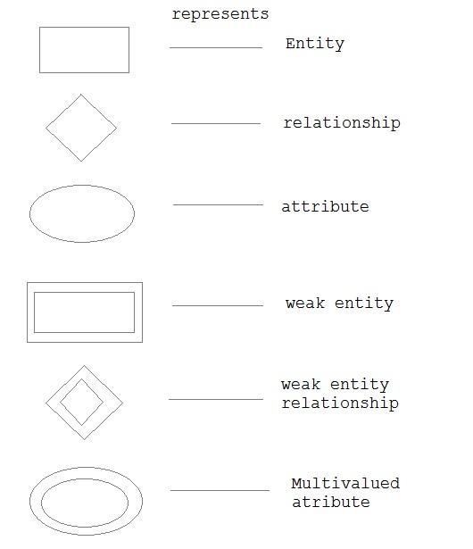 E R Diagram In Dbms Scanftree